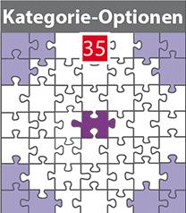 35 Kategorien-Preise-für-webseiten-wordpress-redax24