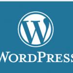 Logo CMS wordpress redax24 webdesign
